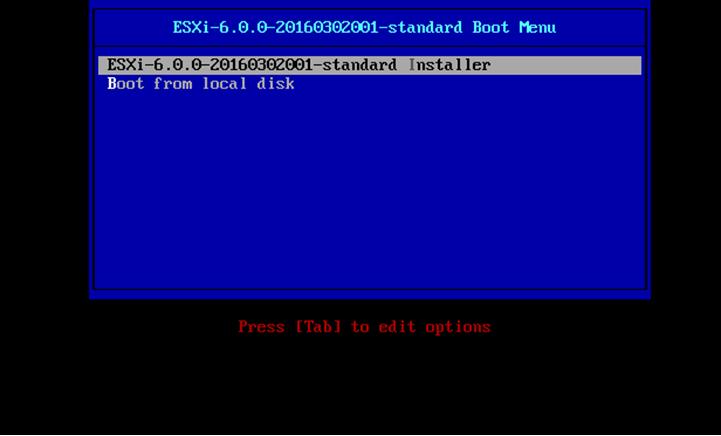 Выбор варианта загрузки инсталятора ESXI